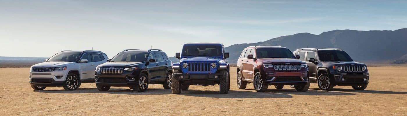 Jeep lineup in a desert