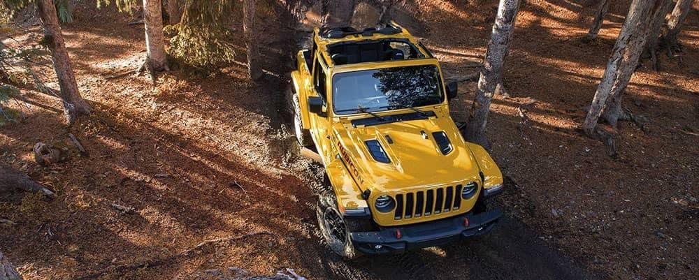 2019 Jeep Wrangler Exterior