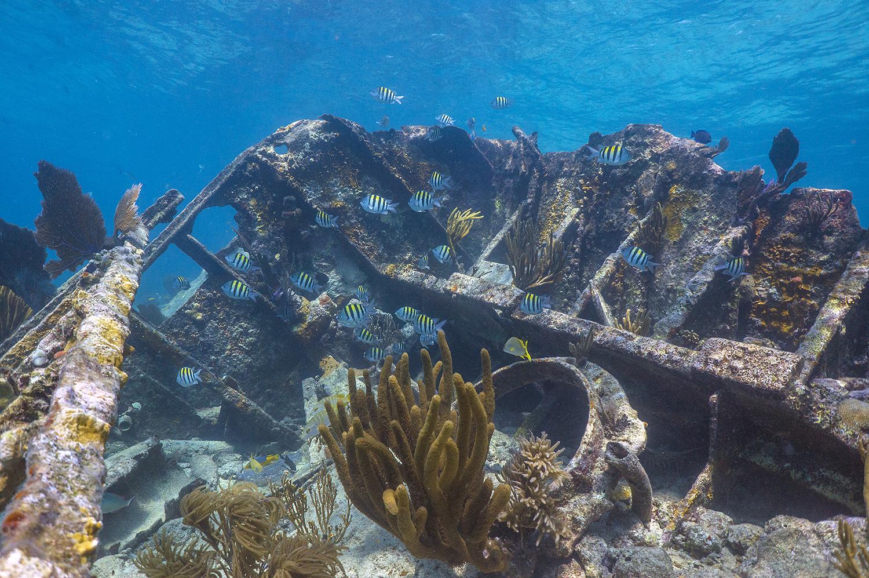 Boca Chita Key Harbor, Biscayne National Park, Florida загрузить
