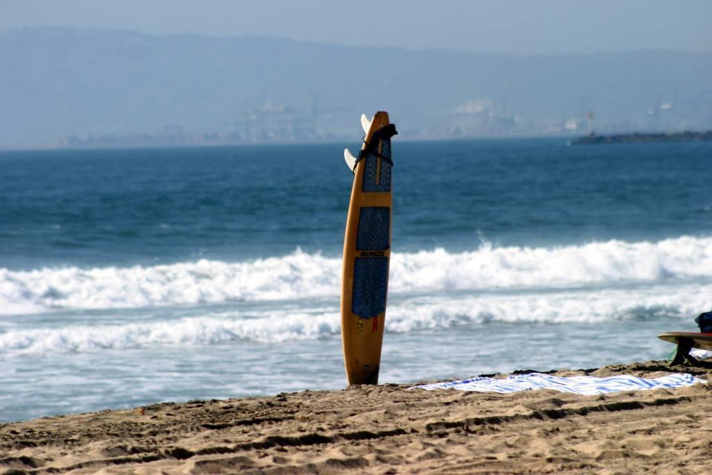 Aventura Surfboard Truck Accessories