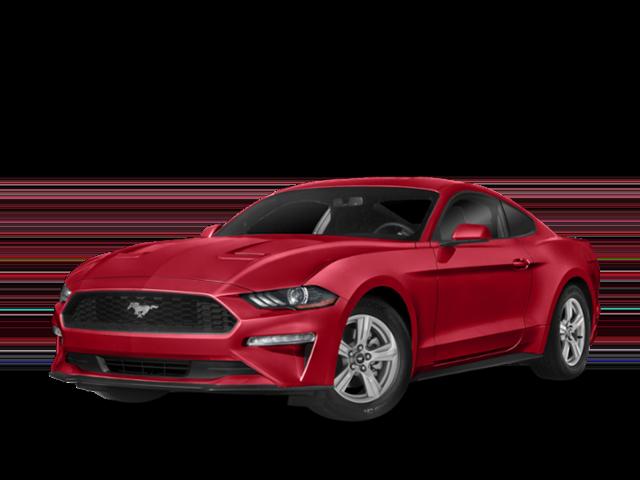 New 2019 Ford Ranger XL RWD Super Cab