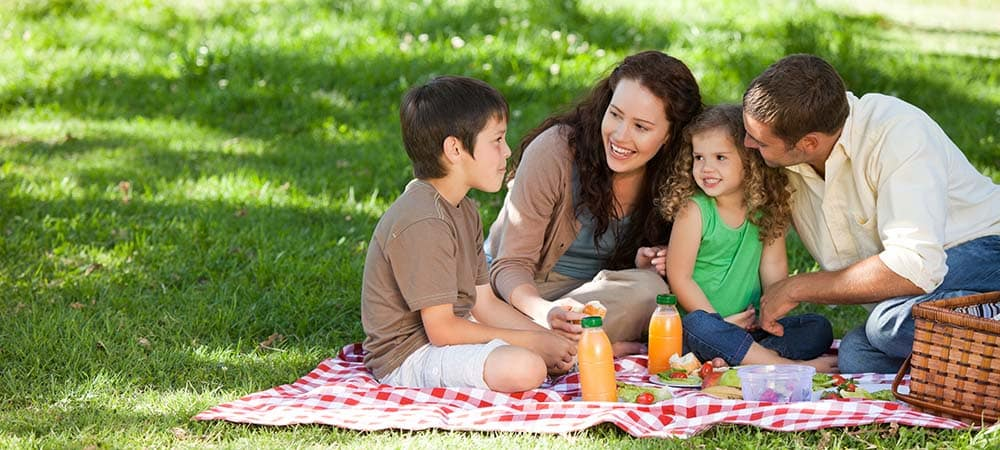 Family eating a picnic in the grass