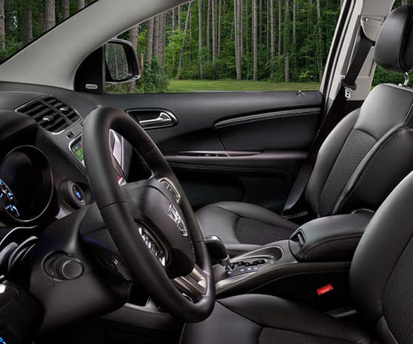2017 Dodge Interior Black Leather with Trees in Background