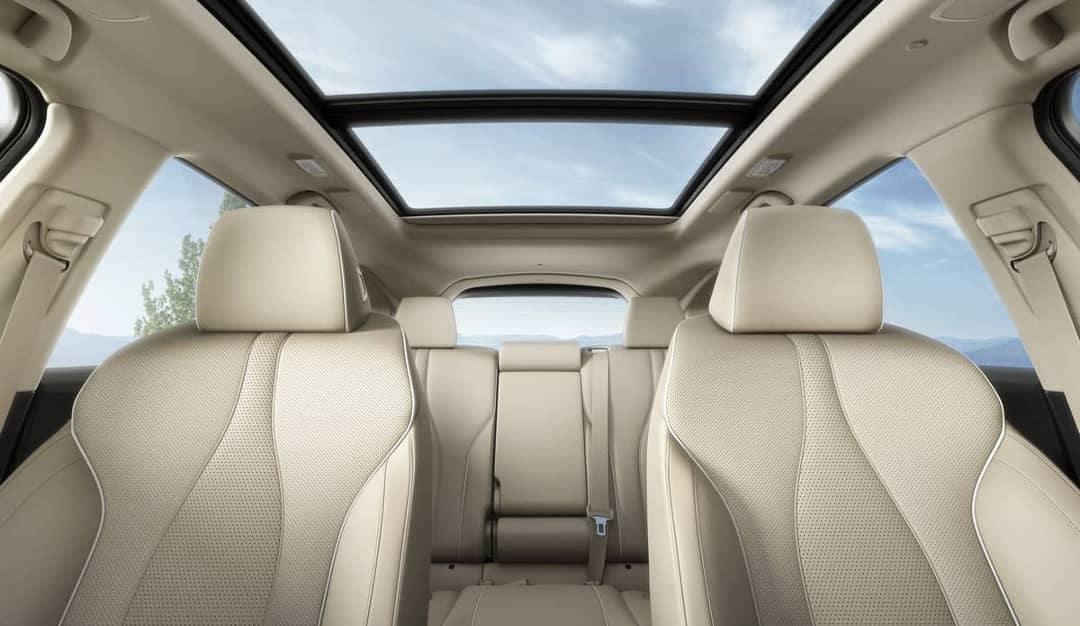2019 Acura RDX interior cabin