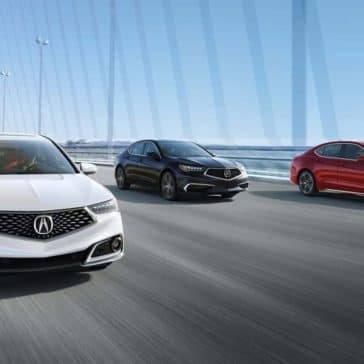 Three 2019 Acura TLX's on bridge