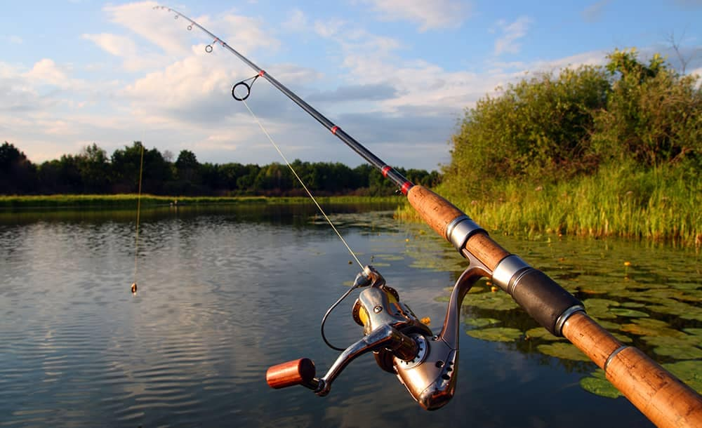 Fishing Pole In Use