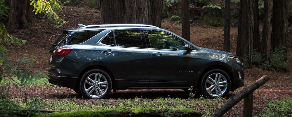 2020 Chevrolet Equinox in the woods