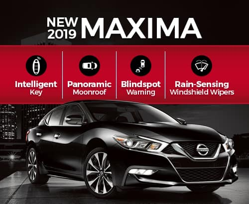 2019 Nissan Maxima For Sale MN