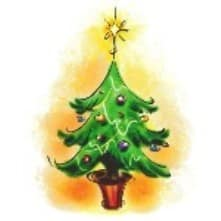 Elmhurst District 205 Foundation's Holiday Tree Sale
