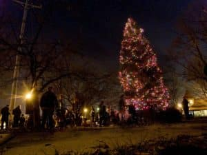 The Elmhurst Holiday Tree Lighting ceremony.