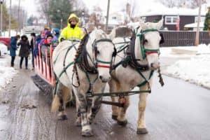 Sleigh Rides, Ice Sculptures & Santa - Elmhurst Toyota