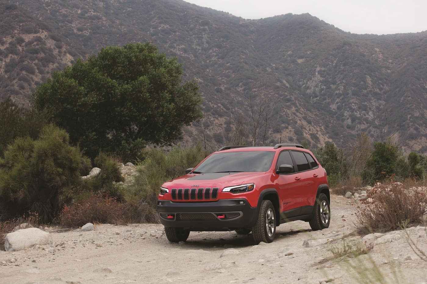 Jeep Cherokee Driving Features