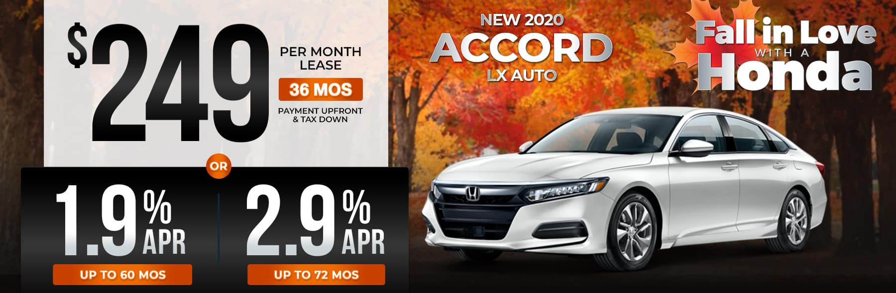 IGH-Oct20-HP-Accord-v1