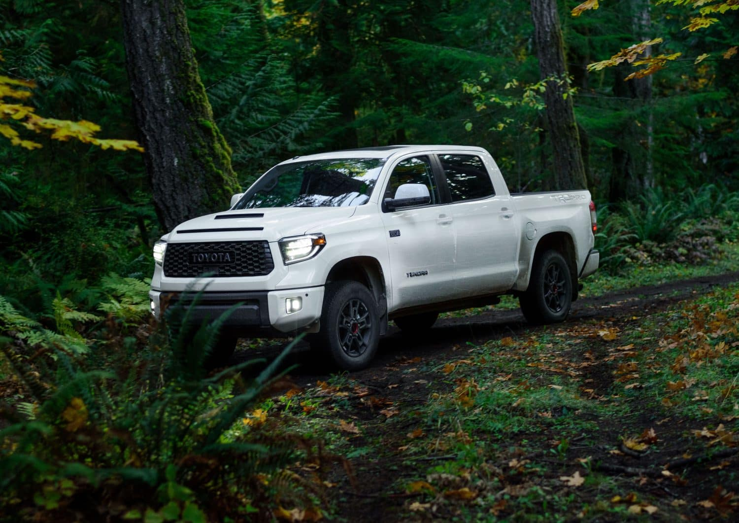 toyota tundra financing near brooklyn dealership NYC