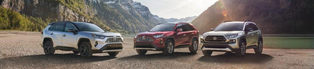 2019 Toyota RAV4 Coming Soon to Staten Island