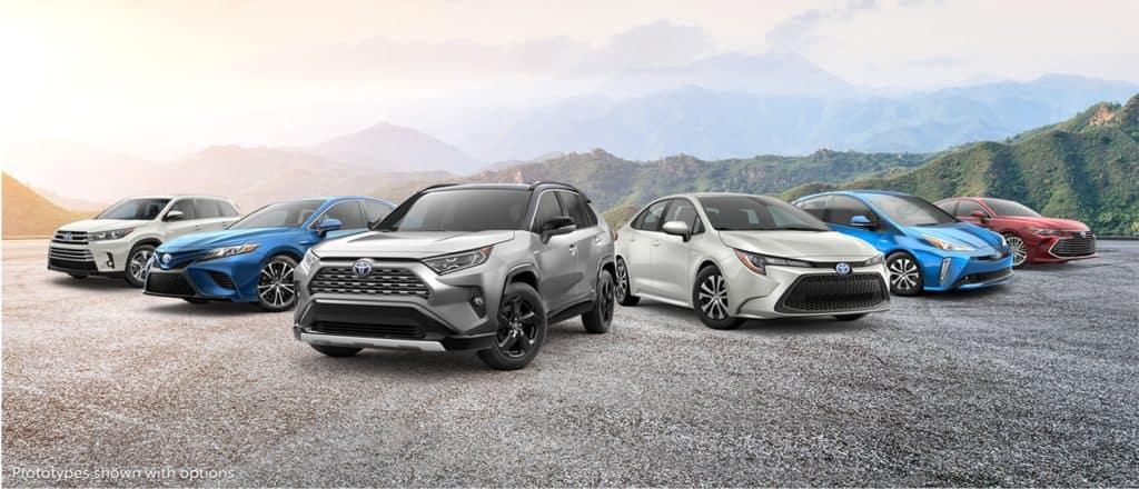 2019 Toyota Vehicles