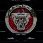 Jaguar logo on car grille