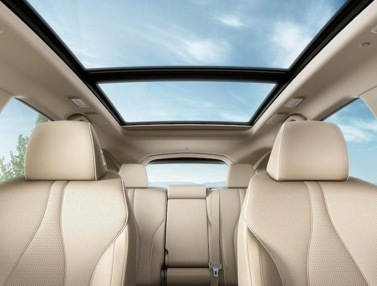 2019 RDX Moonroof