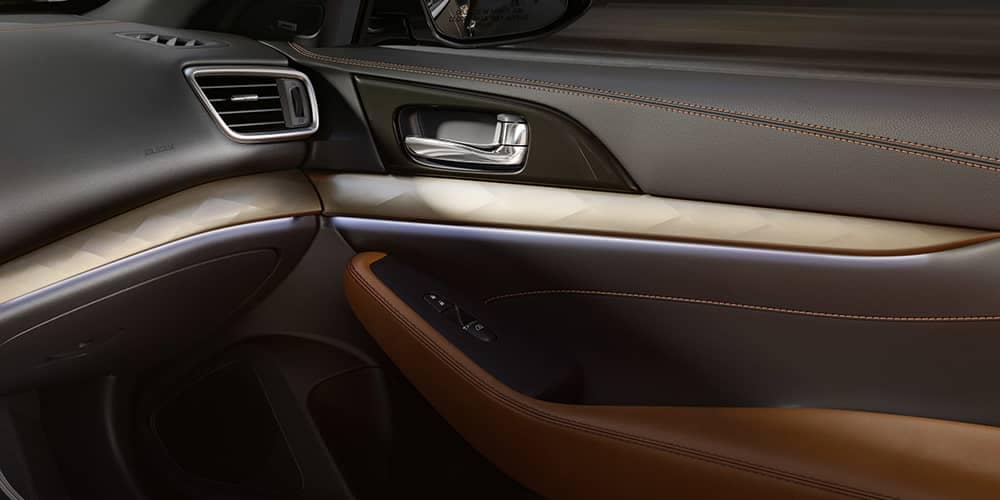 2019 Nissan Maxima Interior Door