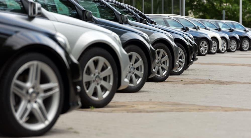 A row of cars parked at a dealership are shown from a low angle.