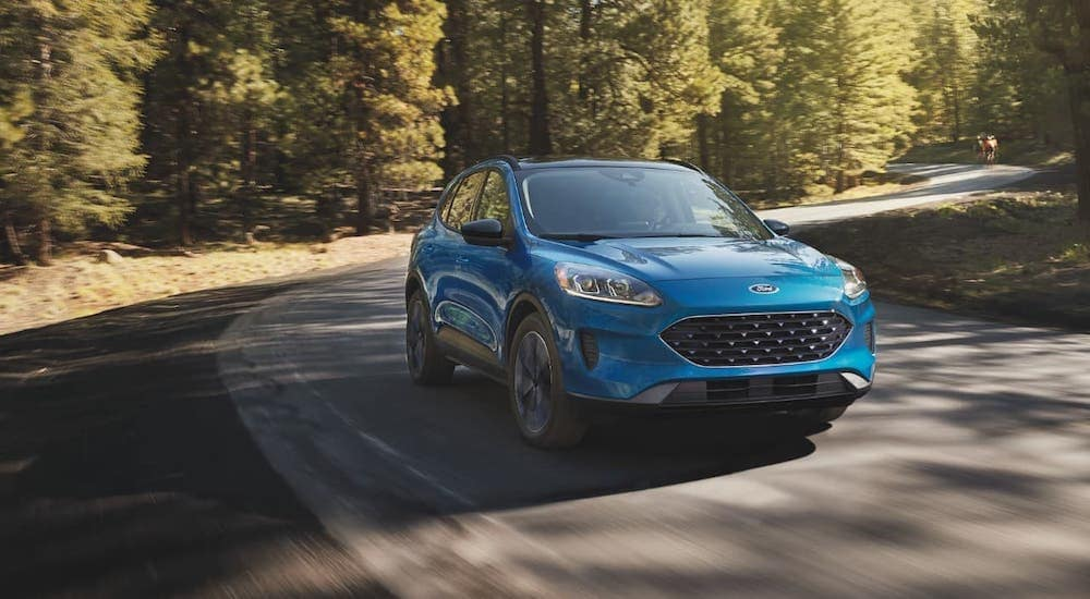 A blue 2019 Ford Escape Hybrid is driving around a woodland road.
