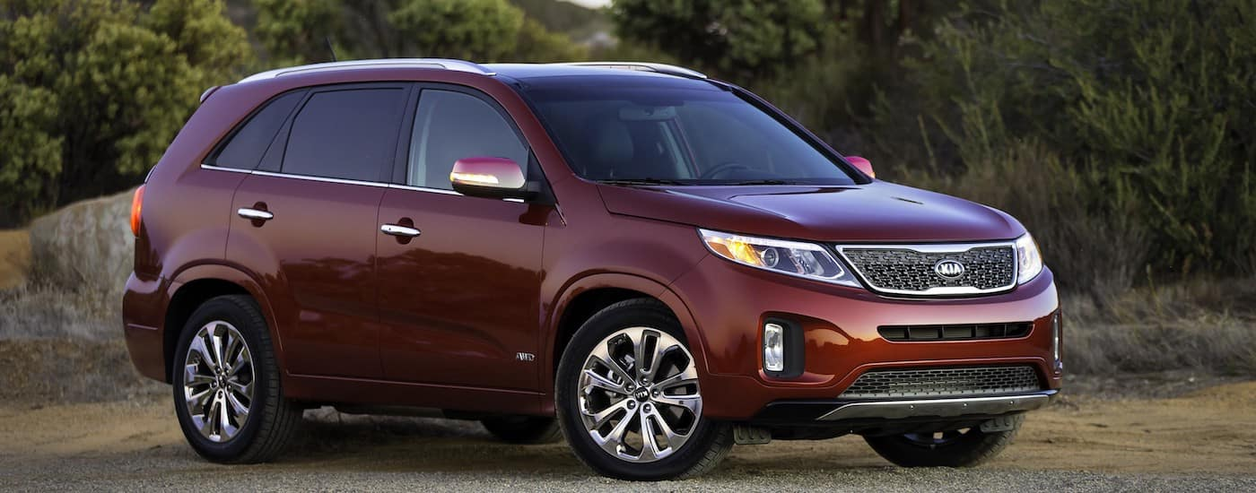 Red 2014 Used Kia Sorento in front of plants