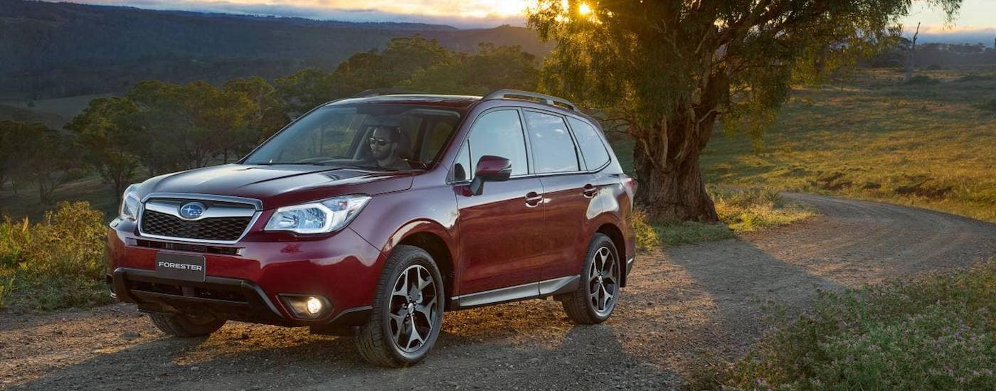 Red Used Subaru Forester driving in the countryside at dusk