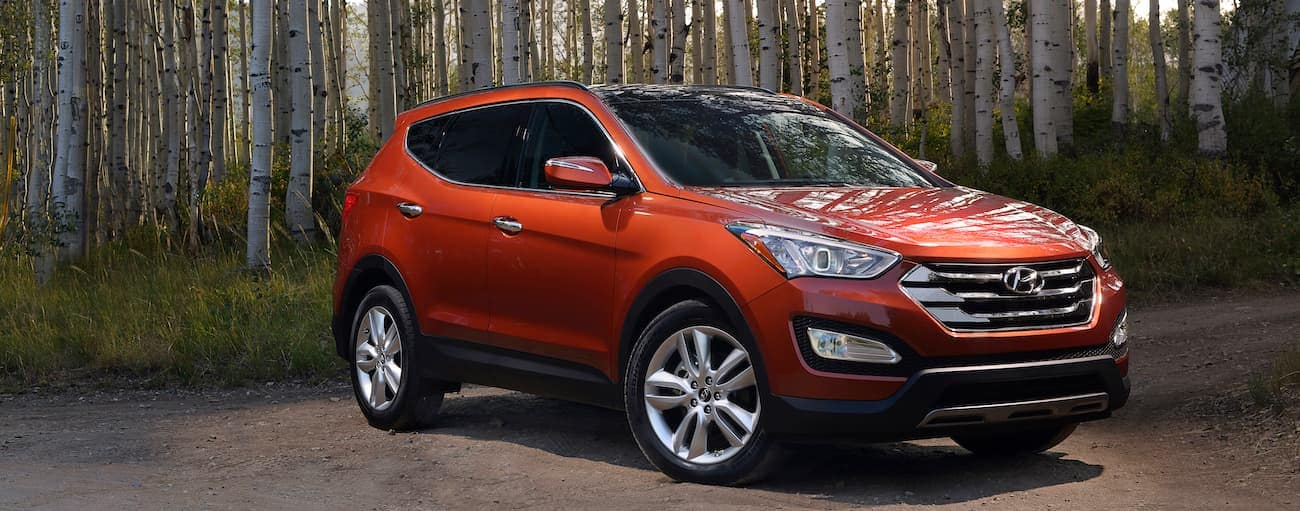 An orange 2014 used Hyundai Santa Fe Sport is parked in front of white birch trees.