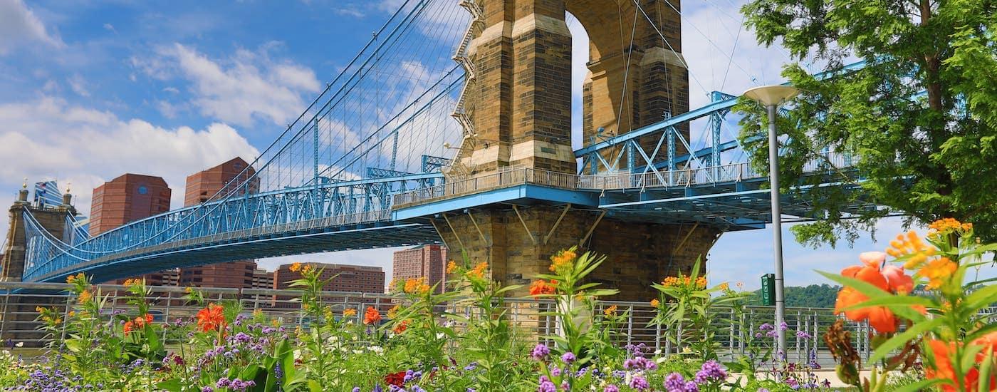 The John A Roebling bridge into Cincinnati, OH, is shown behind flowers.