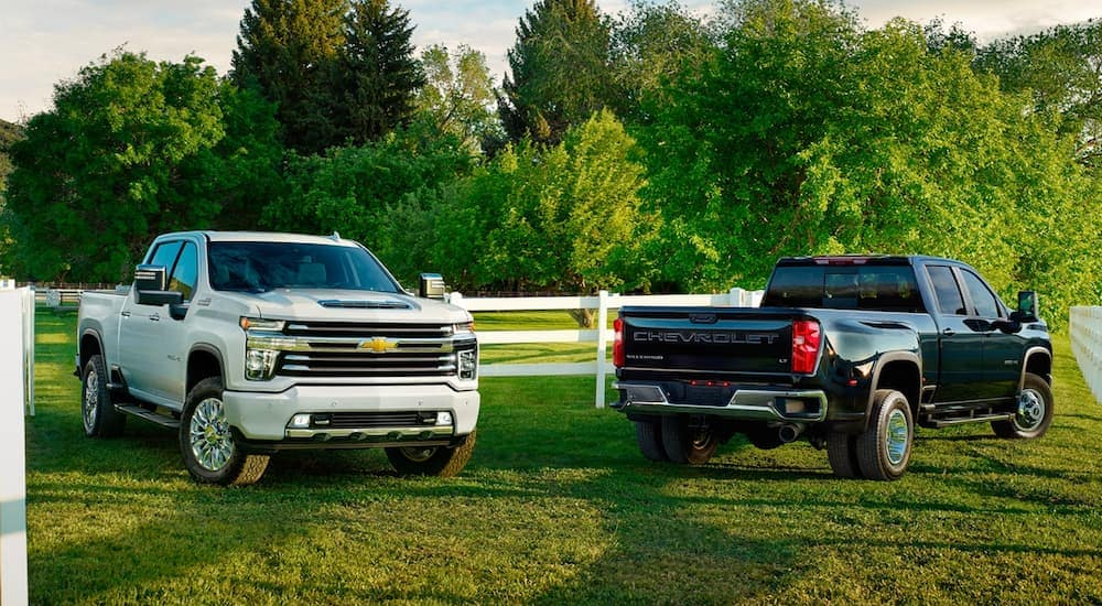 Two Chevy trucks, a white 2020 2500HD and a black 2020 3500HD, are parked in the grass at a farm.