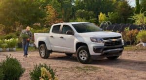 A man is loading landscape plants into a white 2021 Chevy Colorado.