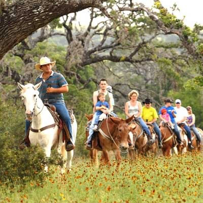 Dixie Dude Ranch 04 400x400