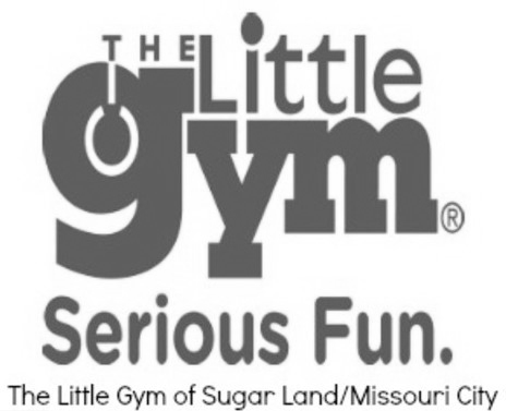 The Little Gym Logo Gray