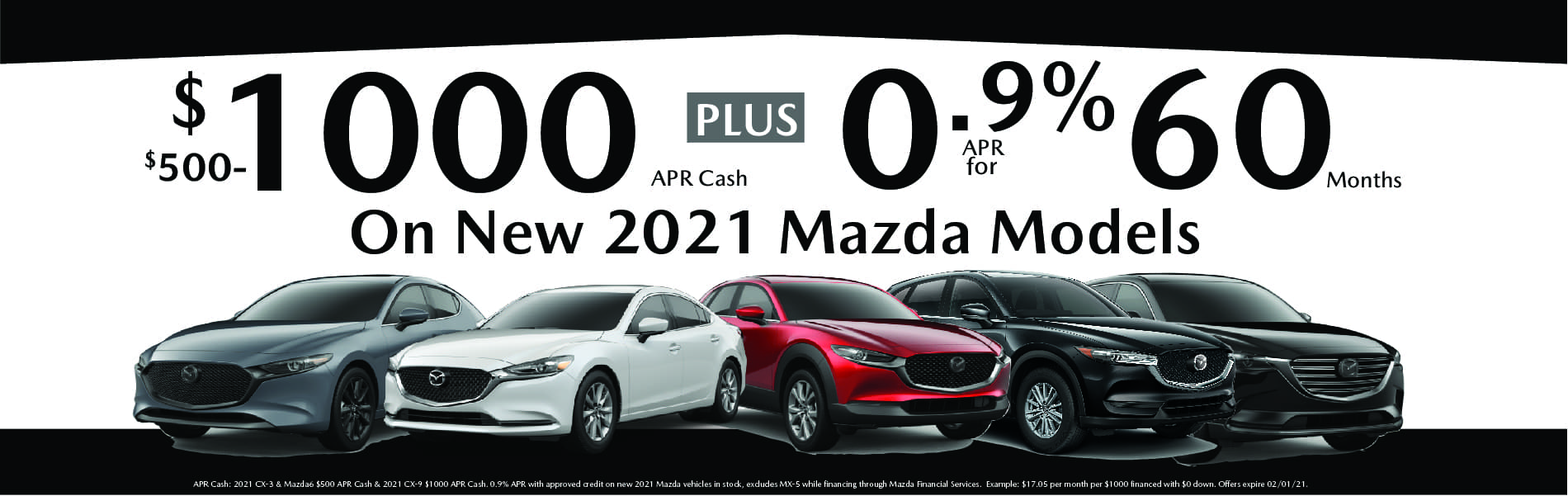 New Vehicle Special APR
