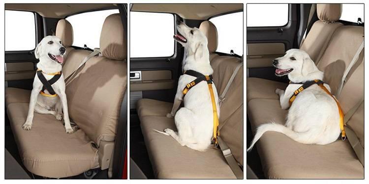 Garber Pet-Safety-Belts