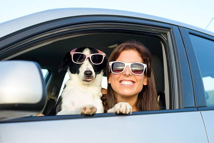 Garber Pet Safety