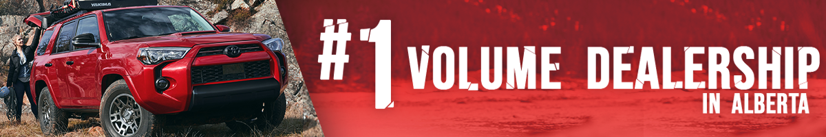 #1 volum dealer in albera