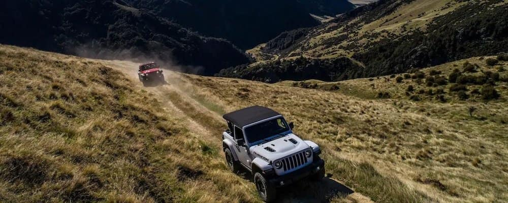 Jeep Wranglers on a hill