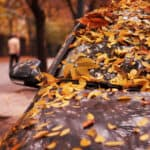 Colorful Leaves Covering a Car Needing Maintenance