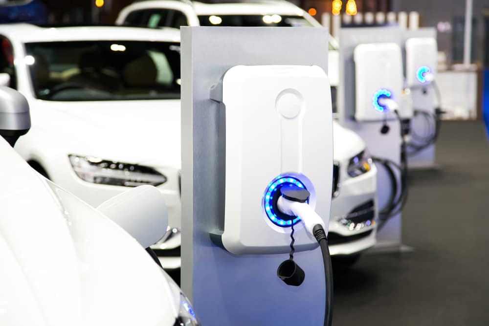 White electric vehicles in a row at charging stations