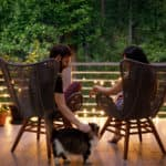 A couple sitting on their porch in rattan chairs at sunset. Petting a cat.